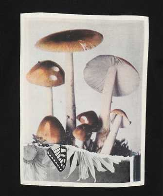 toadstools graphic print T-shirt